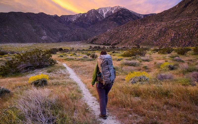 pct california canada
