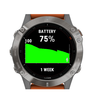 grafico batteria garmin
